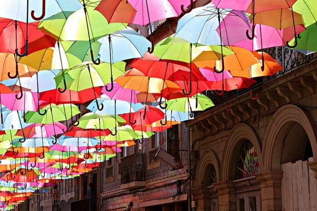Schirme (2)