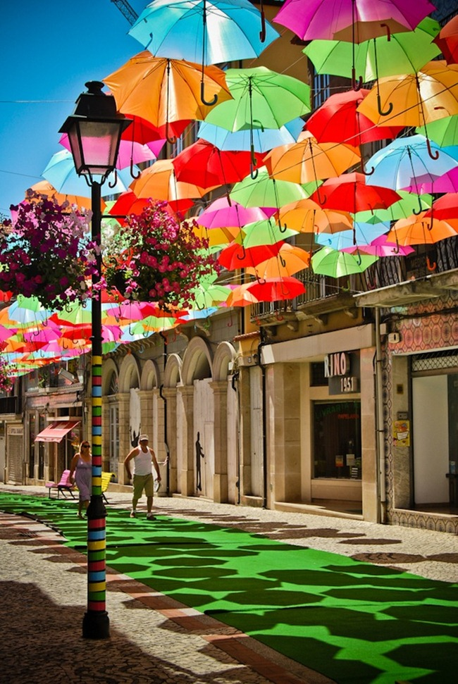 Schirme (4)