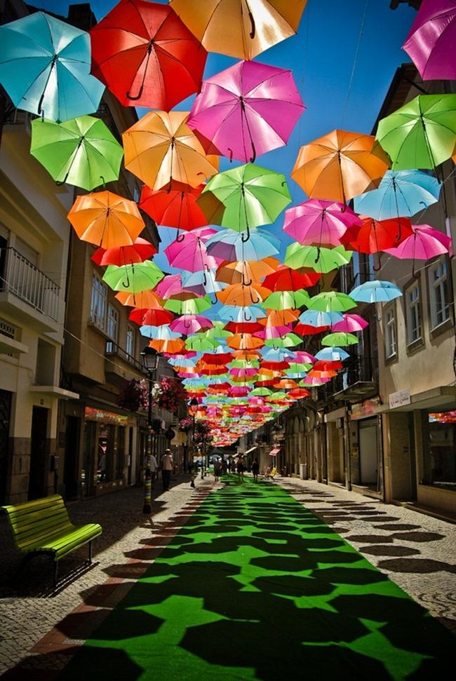 Schirme (5)